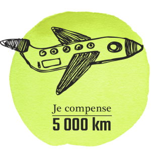 avion-5-300x300