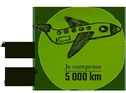 avion-5-300x300_2
